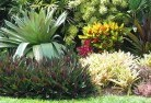 Braddon ACT Bali style landscaping 6old